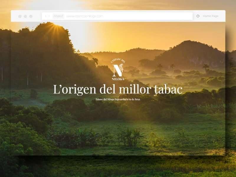 Diseño web para Estanco